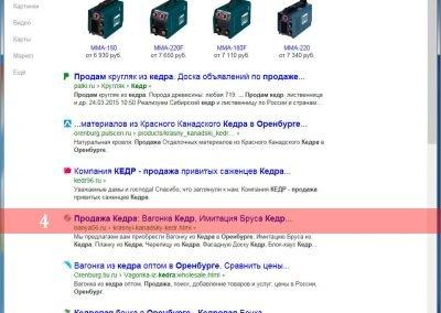 Продвижение-сайта-banya56.ru-(21)