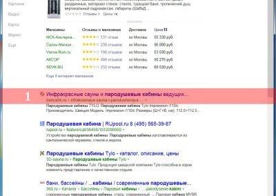 Продвижение-сайта-banya56.ru-(23)