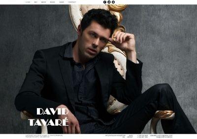 Создание сайта davidtavare.ru (1)