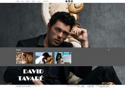 Создание сайта davidtavare.ru (5)
