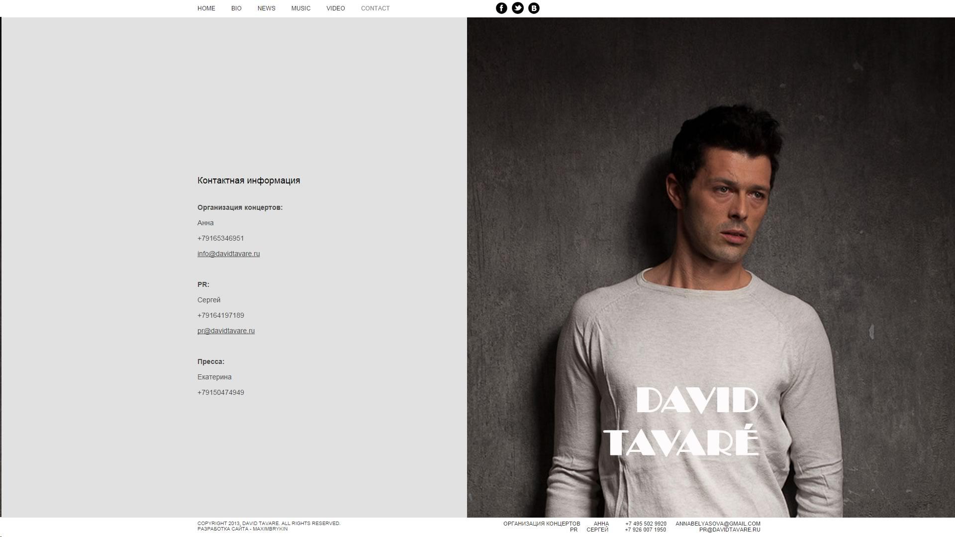 Создание сайта davidtavare.ru (6)