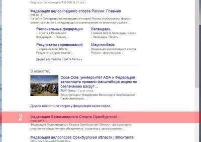 Продвижение сайта fvsoo.ru(2)