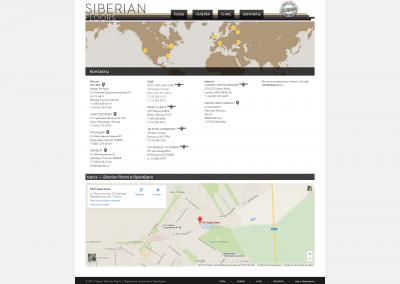 Создание сайта sfparket.ru (15)