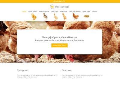 Создание сайта птицефабрики в Оренбурге orenptica.ru